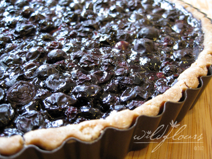 Gluten Free Blueberry Tart for Easter