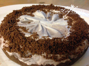 Frosty Chocolate Pie with Graham Cracker Crust!